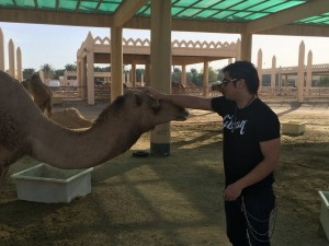 359 - William meeting the camels.  In case you're curious, their hair is very coarse